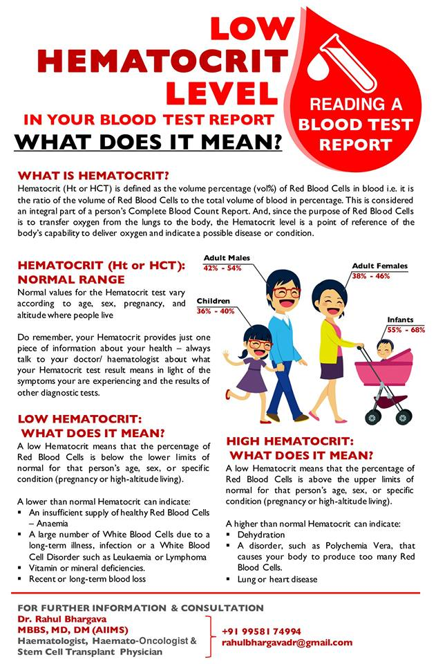 How to Read a Blood Test Report - Low Hematocrit Level