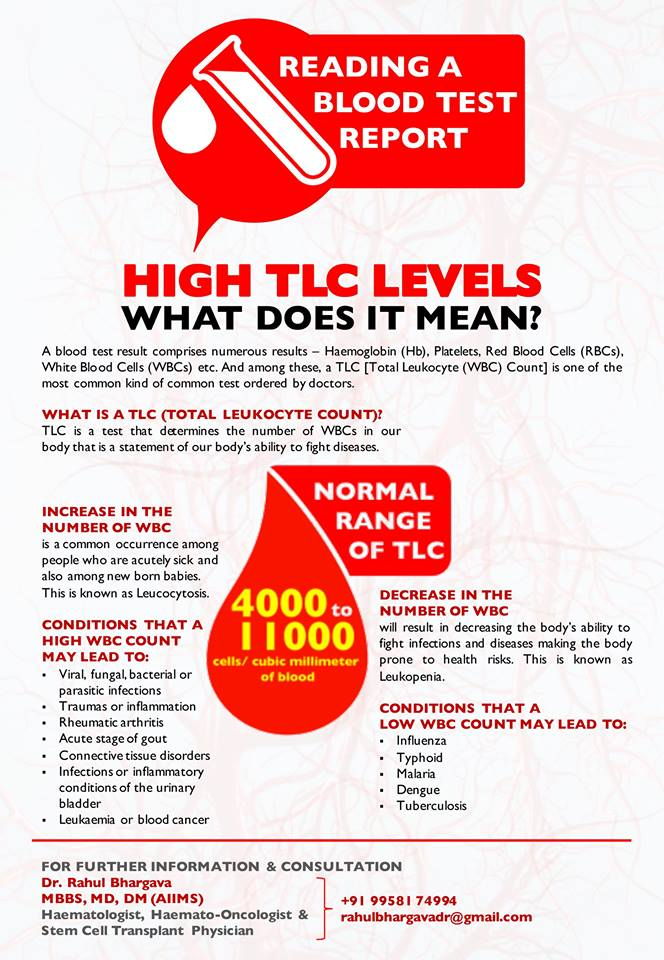 How to Read a Blood Test Report - High TLC Levels