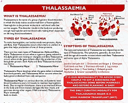 What is Thalassaemia?