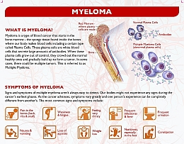 What is Myeloma?