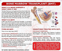 What is  a Bone Marrow Transplant (BMT)?